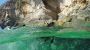 SLOW MOTION, UNDERWATER: Cute miniature pinscher swimming towards rocky coast